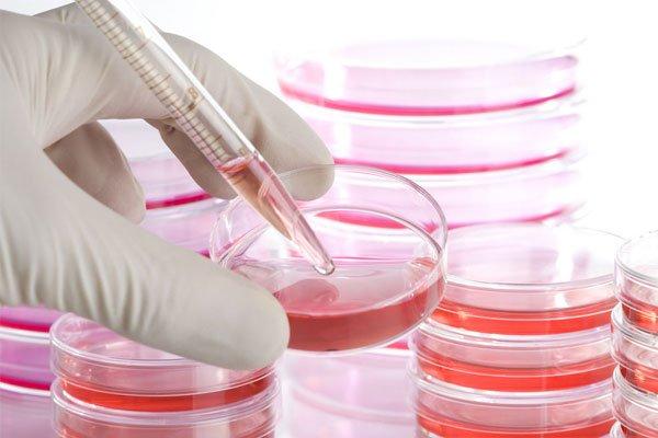 regenerative-medicine-forms